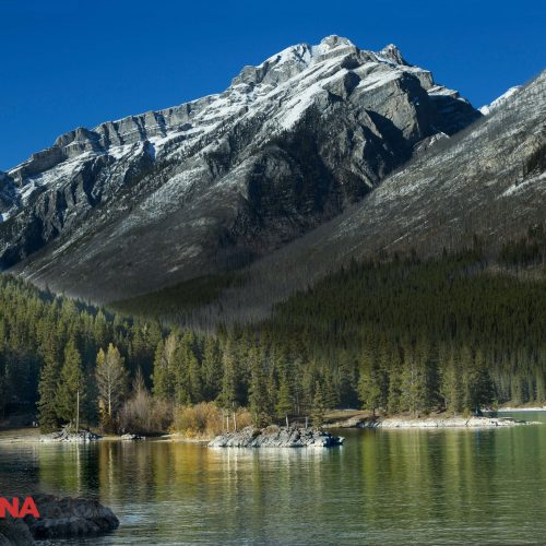 Mountain Trees Landscape