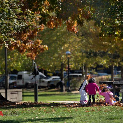 Childhood Park